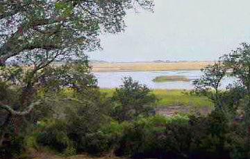Murrells Inlet Land